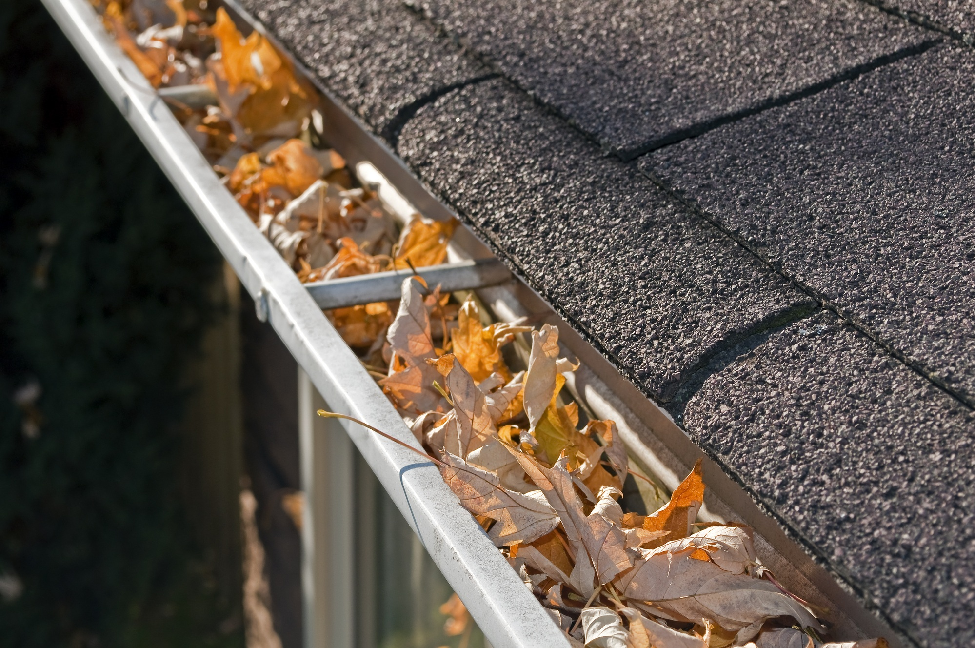 Remove Leaves from Gutters