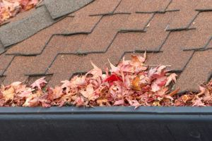 Roof Maintenance Tips and Cleaning Gutters